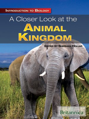 cover image of A Closer Look at the Animal Kingdom