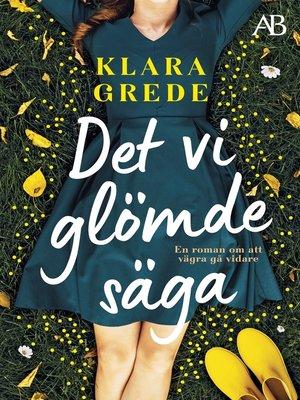 cover image of Det vi glömde säga