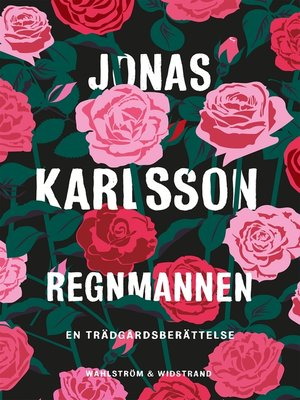 cover image of Regnmannen