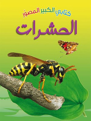 cover image of كتابي الكبير الصوّر: الحشرات