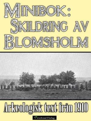cover image of Skildring av Blomsholms fornminnen år 1910