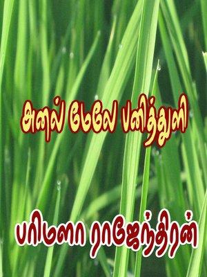 cover image of Anal Mele Panithuli
