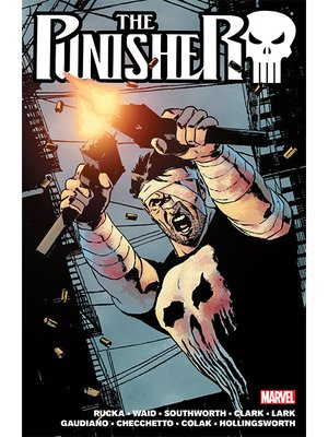 cover image of The Punisher By Greg Rucka, Volume 2