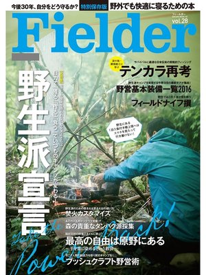 cover image of Fielder Volume28: 本編
