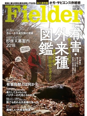 cover image of Fielder Volume38: 本編