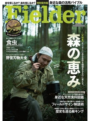 cover image of Fielder Volume21: 本編