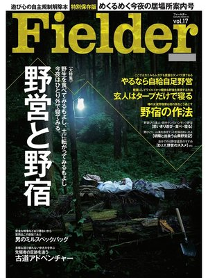 cover image of Fielder Volume17: 本編