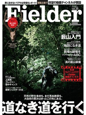 cover image of Fielder Volume20: 本編