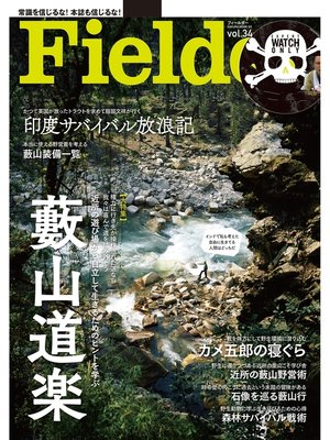 cover image of Fielder Volume34: 本編