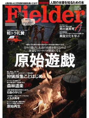cover image of Fielder Volume29: 本編