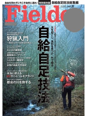 cover image of Fielder Volume25: 本編