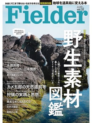 cover image of Fielder Volume32: 本編