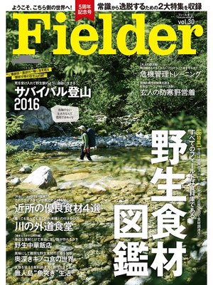 cover image of Fielder Volume30: 本編