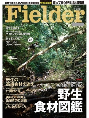 cover image of Fielder Volume18: 本編