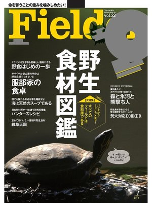 cover image of Fielder Volume23: 本編