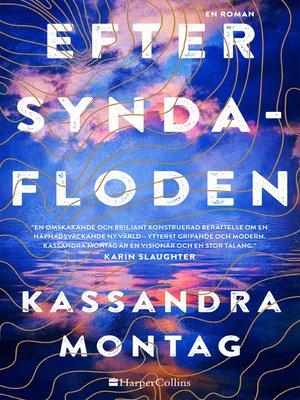 cover image of Efter syndafloden