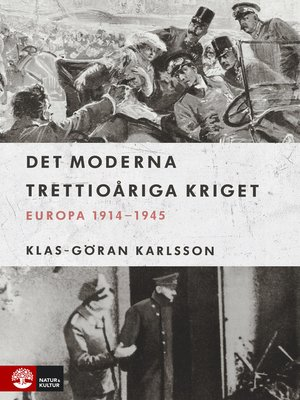 cover image of Det moderna trettioåriga kriget