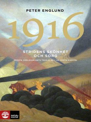 cover image of Stridens skönhet och sorg 1916