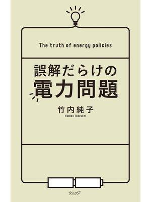 cover image of 誤解だらけの電力問題: 本編