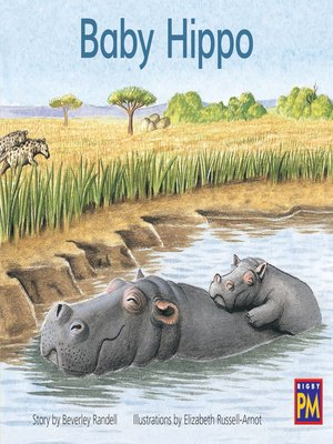 cover image of Baby Hippo
