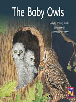 cover image of The Baby Owls