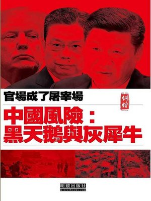 cover image of 中國風險