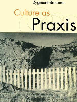 cover image of Culture as Praxis