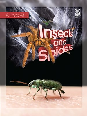 cover image of Insects and Spiders