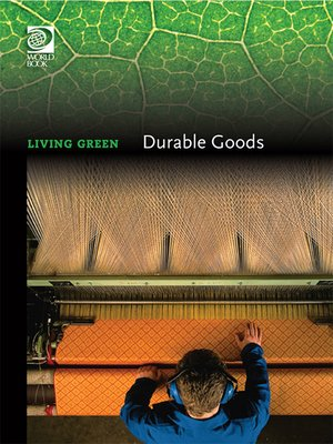 cover image of Durable Goods