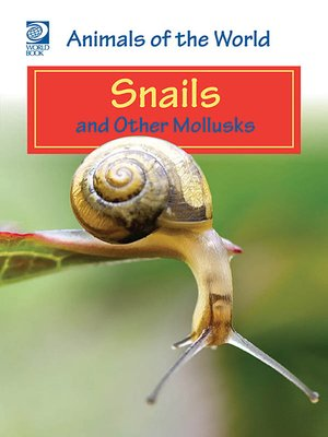 cover image of Snails and Other Mollusks