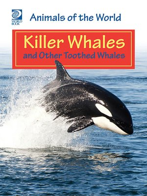 cover image of Killer Whales and Other Toothed Whales