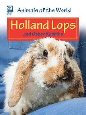 cover image of Holland Lops and Other Rabbits
