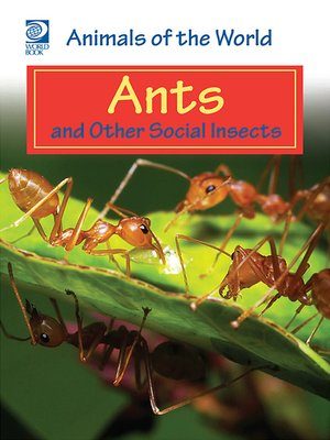 cover image of Ants and Other Social Insects