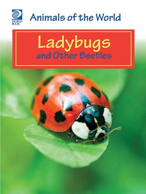 cover image of Ladybugs and Other Beetles