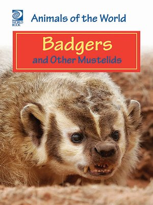 cover image of Badgers and Other Mustelids