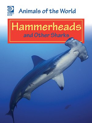 cover image of Hammerheads and Other Sharks
