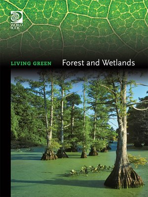 cover image of Forests and Wetlands