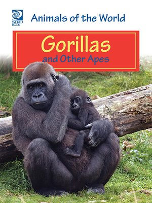 cover image of Gorillas and Other Apes