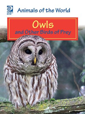 cover image of Owls and Other Birds of Prey