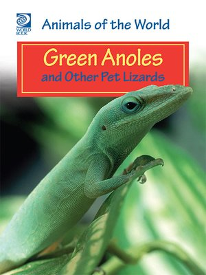 cover image of Green Anoles and Other Pet Lizards