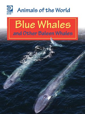 cover image of Blue Whales and Other Baleen Whales