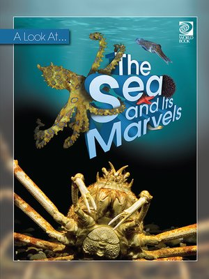 cover image of The Sea and Its Marvels