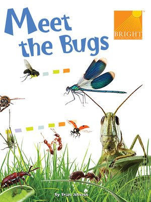 cover image of Meet the Bugs