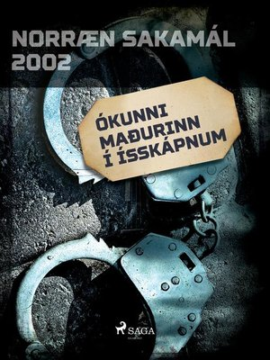cover image of Ókunni maðurinn í ísskápnum