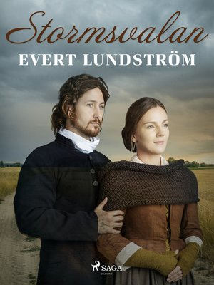 cover image of Stormsvalan