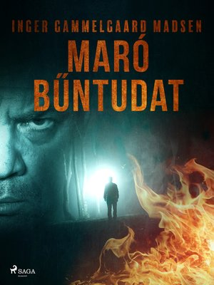 cover image of Maró bűntudat