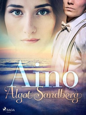 cover image of Aino