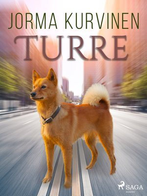 cover image of Turre