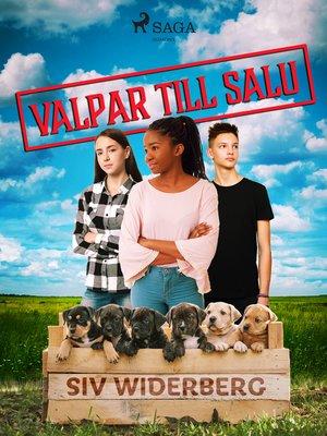 cover image of Valpar till salu