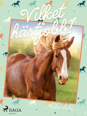 cover image of Vilket hästjobb!